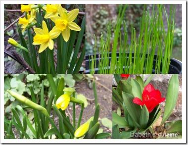 1er jour du printemps