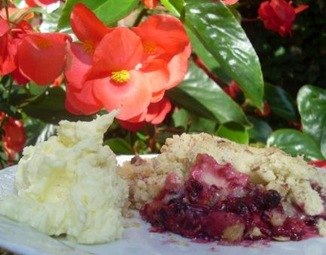 crumble fruits rouges 3