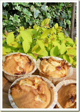 muffin monday 1