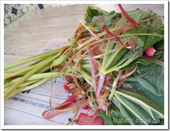 épluchage de rhubarbe
