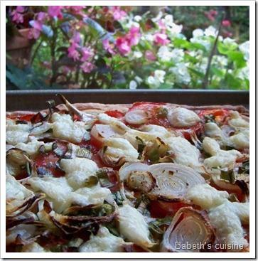 tarte tomates oignons mozza cuite