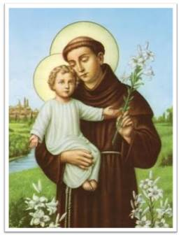Image result for st. anthony & lilies