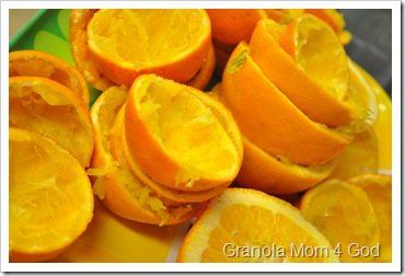 Orange Juice 481