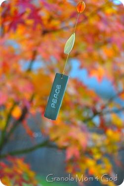 fall october 2009 007