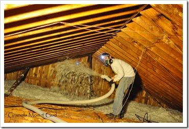 insulation day 015