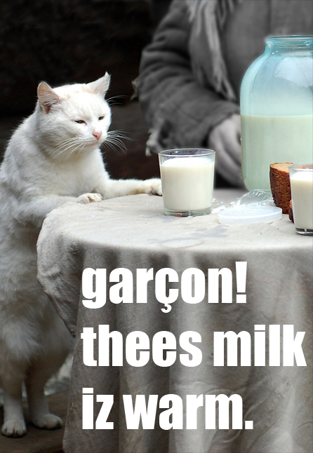 garcon! thees milk iz warm