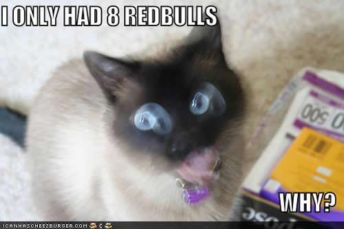 I ONLY HAD 8 REDBULLS