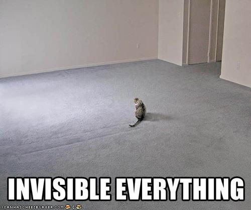 INVISIBLE EVERYTHING