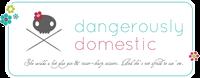 Dangerously Domestic Jen