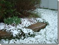 april 2010 snow 003