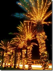 Christmas-Lights-Miami