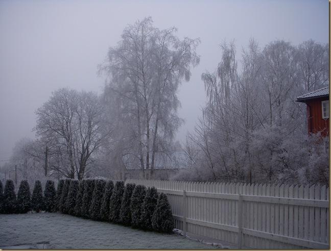 Vinter 0809 003