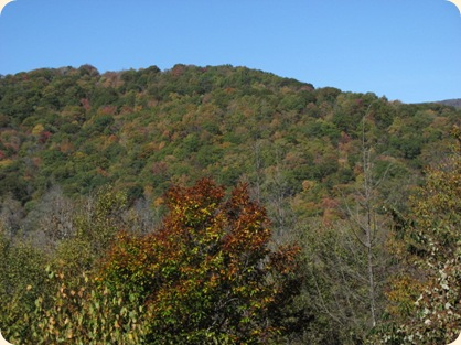 Cherohala Skyway & Dragon's Tail Hwy 079
