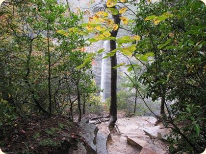 Fall Creek Falls SP 073