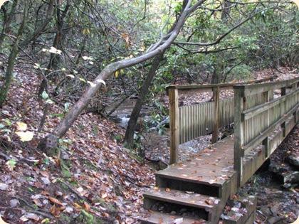 Fall Creek Falls SP 080
