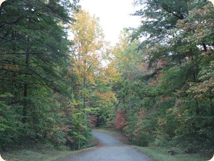 Fall Creek Falls SP 112