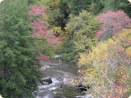 Fall Creek Falls SP 195