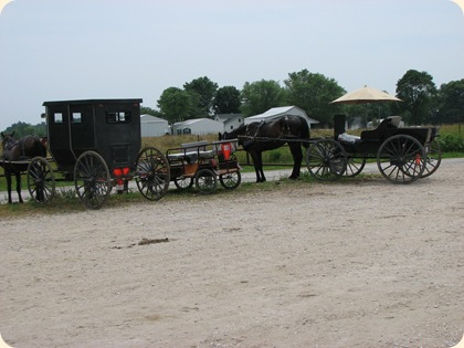 Montgomery, IN Amish 026