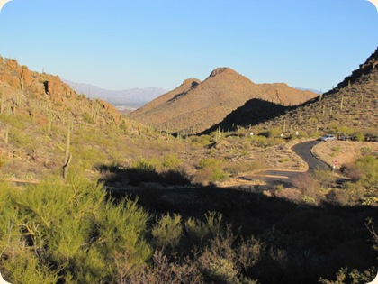 Saguaro National Park 070