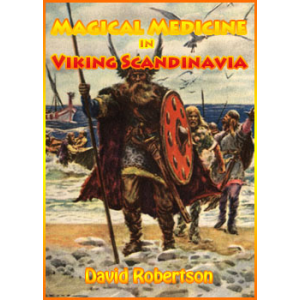 Magical Medicine In Viking Scandinavia Cover
