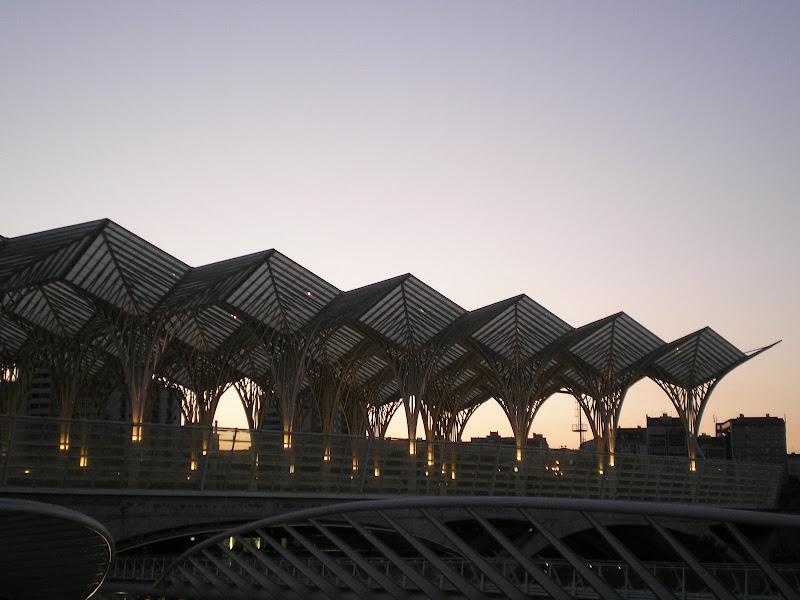 Calatrava, Estação do Oriente