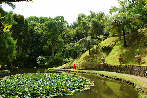 O paraiso é por ali, Parque Terranostra, Furnas, São Miguel, Açores