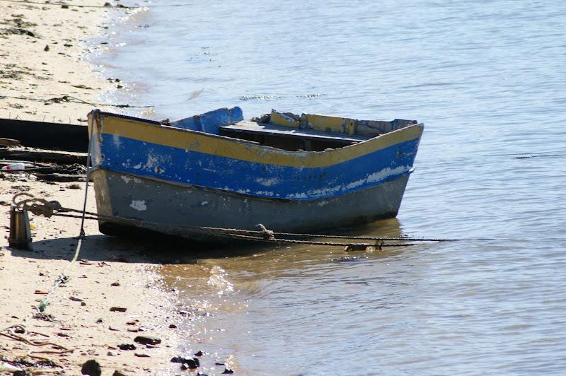 Seixal, barco