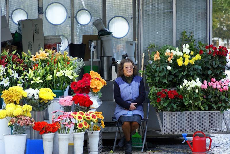 Passa por mim no Rossio... flores