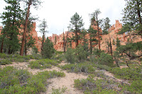 BryceCanyonNP_20100818_0095.JPG Photo