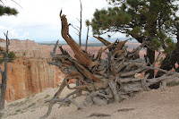BryceCanyonNP_20100818_0231.JPG Photo
