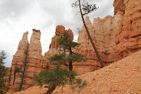 BryceCanyonNP_20100818_0121.JPG Photo