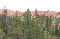BryceCanyonNP_20100818_0103.JPG Photo