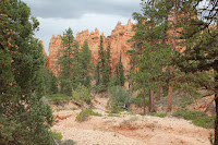 BryceCanyonNP_20100818_0092.JPG Photo