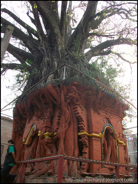 Handigaon Krishna Temple (7)