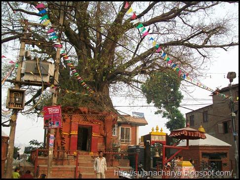 Handigaon Krishna Temple (1)