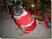 small christmas 2006