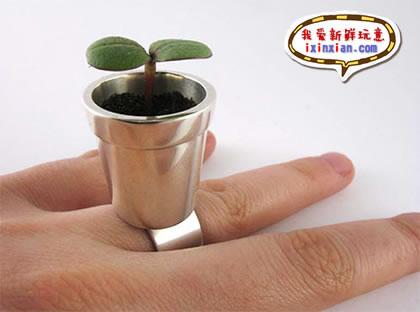 WOW!带花盆的戒指-爱新鲜