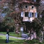 Margaret's Tree House
