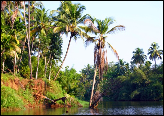 കുറുമാലിപ്പുഴ