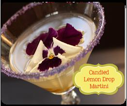 Candied Lemon Drop Martini copy