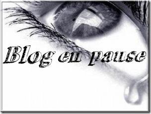 blog%20en%20pause