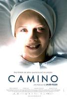 Camino / カミーノ