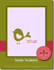 ssc128 (2)