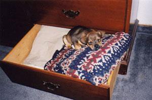 annie_drawer.jpg
