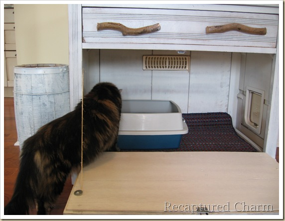 Old Cabiinet to litterbox 043