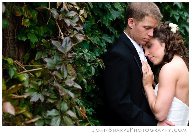 Wedding photography at Germanic American Institute in St Paul, MN