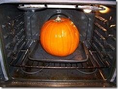 2009-10-19 002