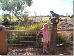 2009-11-09 002