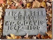 Eliza Fell