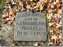Harold Treakle